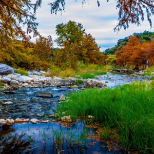 Autumn Trees River Wallpaper