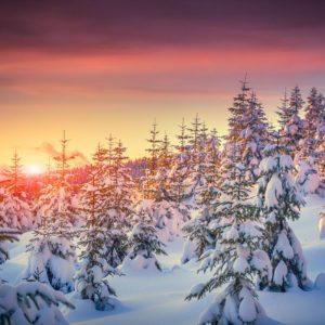 Winter Sunrise In Mountain Wallpaper