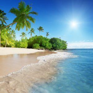 Caribbean Sea And Palms Wallpaper