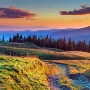 Colorful Summer Sunrise Wallpaper
